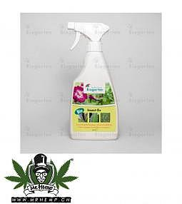 Insect Ex 500ml