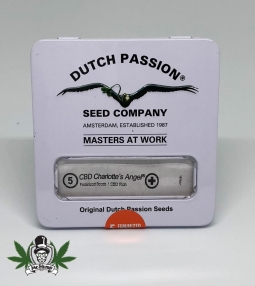 Dutch Passion Charlottes Angel Automatic CBD Seeds