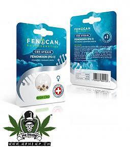 Fenocan Fenomoon CBD Seeds